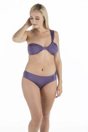 Cassidy Purple